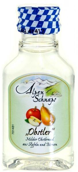 Alpenschnaps Steinbeisser Obstler PET Miniatur